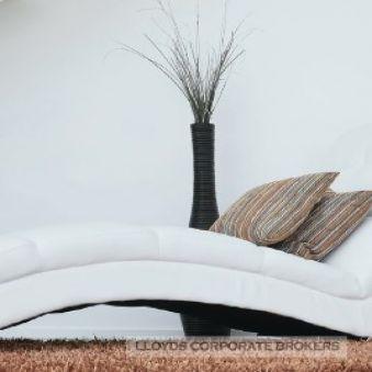 European Designer Furniture - Multi-Store Retailer + Importer
